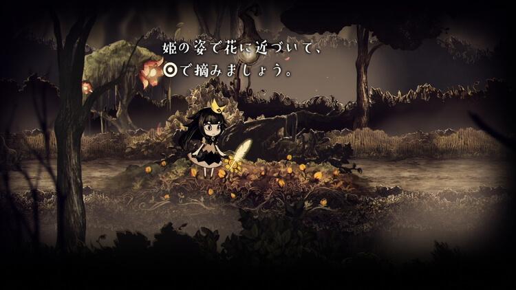 嘘つき姫と盲目王子 花畑